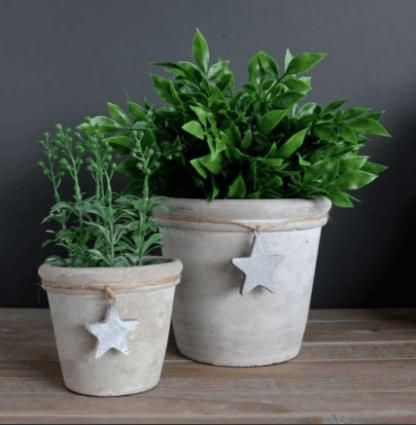Concrete star pots