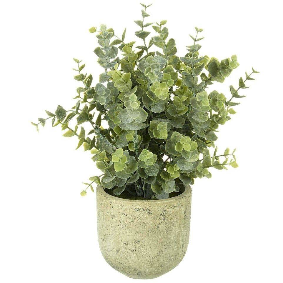 Faux Potted Eucalyptus - Artificial Plant Pots