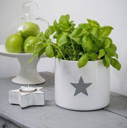 White Plant Pot with Grey Star Design