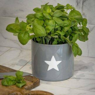Grey Plant Pot with White Star Design
