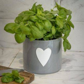 Grey Plant Pot with White Heart Design